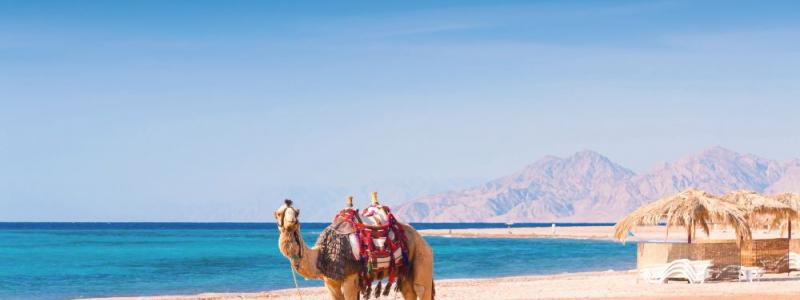 دليلك بكل ما يخص السفر الى مالديف مصر مرسي علم وافضل اماكن الاقامة والخروج بها