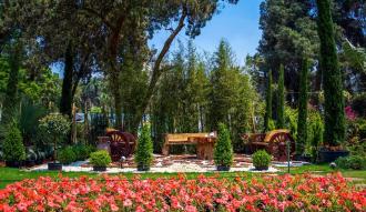 تعرف على موعد افتتاح معرض الزهور بحديقة الاورمان بالجيزة وقائمة بأفضل النباتات التى يمكنك شرائها
