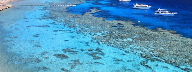 استكشف جمال البحرالاحمر وجرب تقضي داي يوز في واحدة من افضل الانشطة الترفيهية في البحر الاحمر بالتفاصيل والاسعار