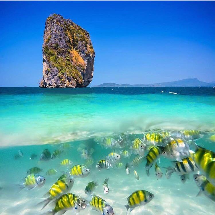 كرابي تايلاند