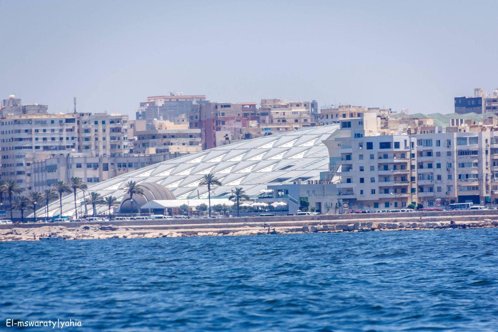 مكتبة اسكندرية