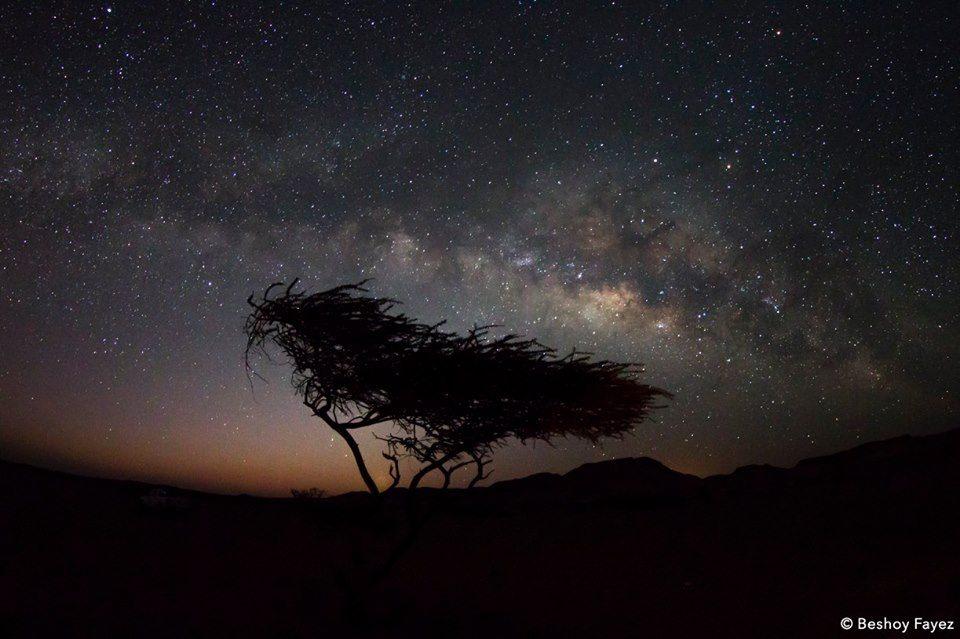 ذراع مجرة درب التبانة